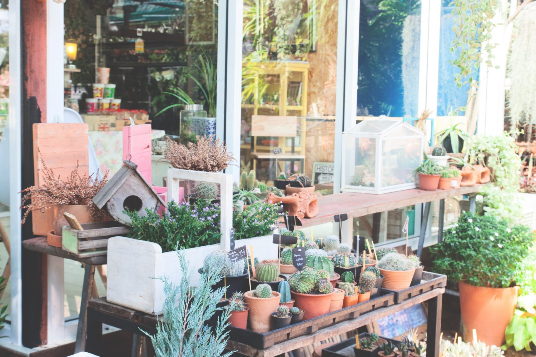 Hoe het best een kleine tuin inrichten for Tuin inrichten planten