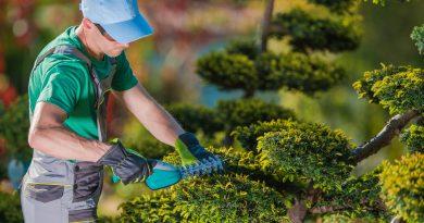 Tuinman voor mijn tuin onderaanleg
